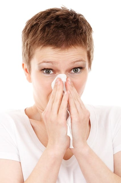 sneezing - Maid Services to Kernersville, Greensboro and surrounding areas